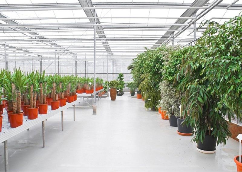 Công trình mái sinh thái khu nhà kính nông nghiệp